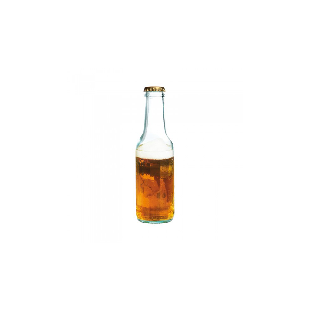 GINTO Bottle 20cl