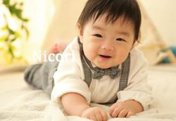 NICO3690