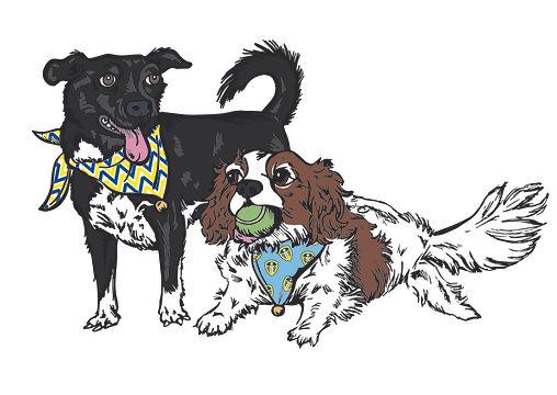 Pet Dog's Illustration Portrait | Pitman Draws