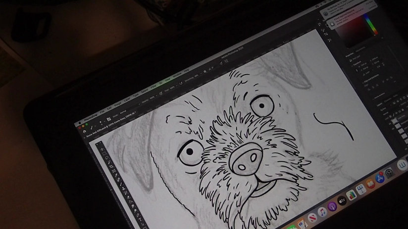 Drawing a Border Terrier Line work on the Wacom Cintiq 16. Showing How I Illustrate digitally.