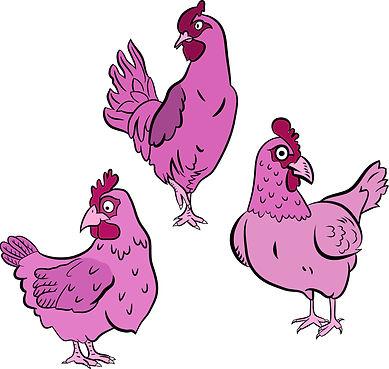 Pink Hens | Pitman Draws