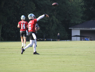 Panthers upbeat about direction after second day of training camp