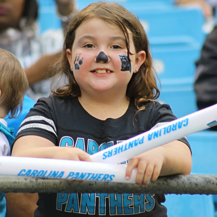 Carolina Panthers Fan Fest returns to Bank of America Stadium