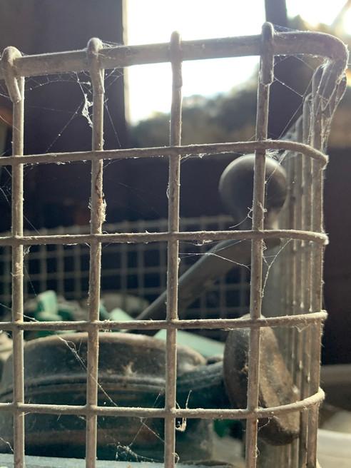 Cobwebs and a Basket
