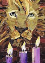 Lion of Judah - Advent 3