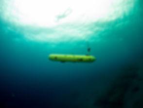 underwater1.jpeg