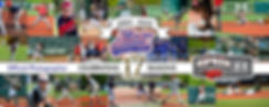 MLP Banner 2020.jpg