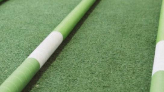 Pro Fit Sticks