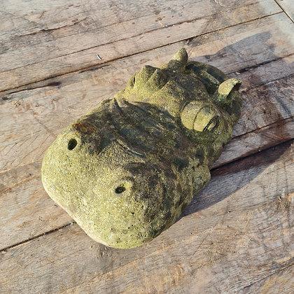Weathered Hippo Head