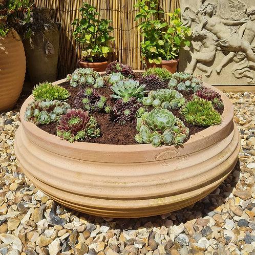 Cretan Terracotta Ribbed Bowl
