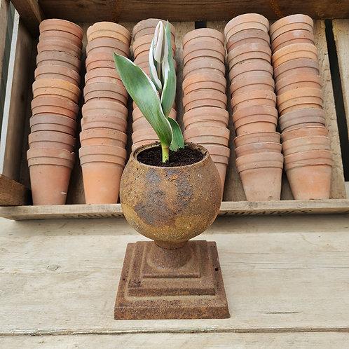 Metal Bulb Planter