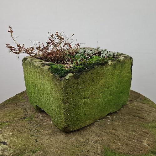 Unusual Antique Stone Trough
