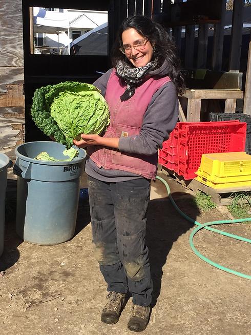 Farmer Regina Longview.png