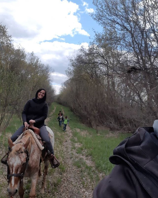 I think I might need a few more horses..