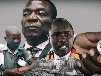 The relationship between corruption and service delivery: The case of Zimbabwe
