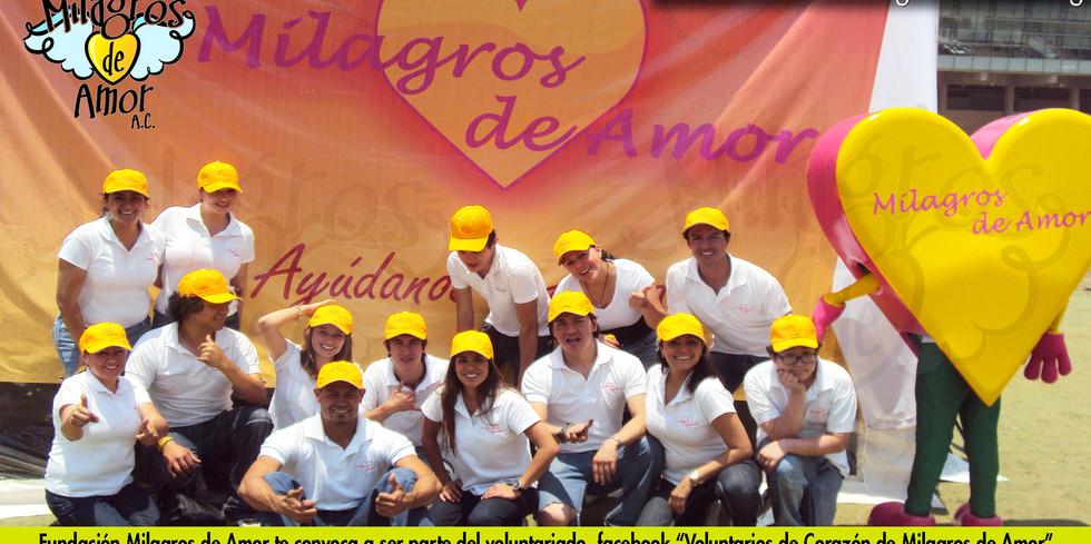 Voluntarios de corazón.jpg