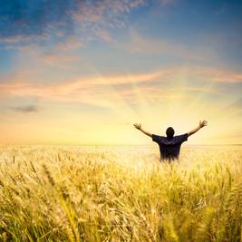 Sacred Path in a Secular World