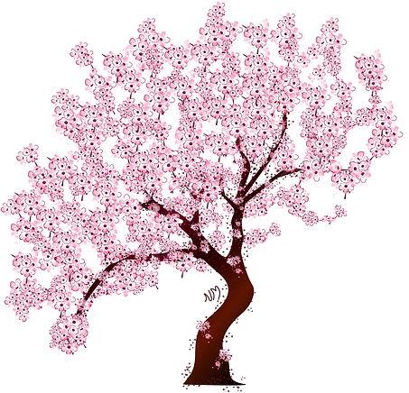 arbrecerisier [Récupéré].jpg