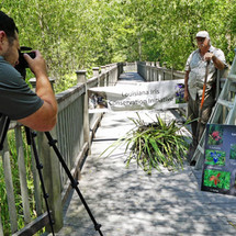 Filming a video of a LICI iris restoration by the Lafourche Parish Government's A Look At Lafourche Facebook page at the town of Lockport Elevated Boardwalk.