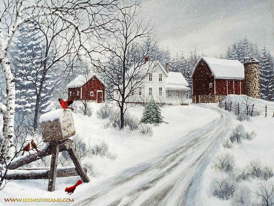 Christmas home2.jpg