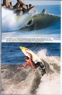 Gorkin SURFER MAG