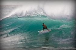 Hawaii Bliss with Wardo