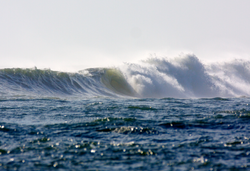 River Wave