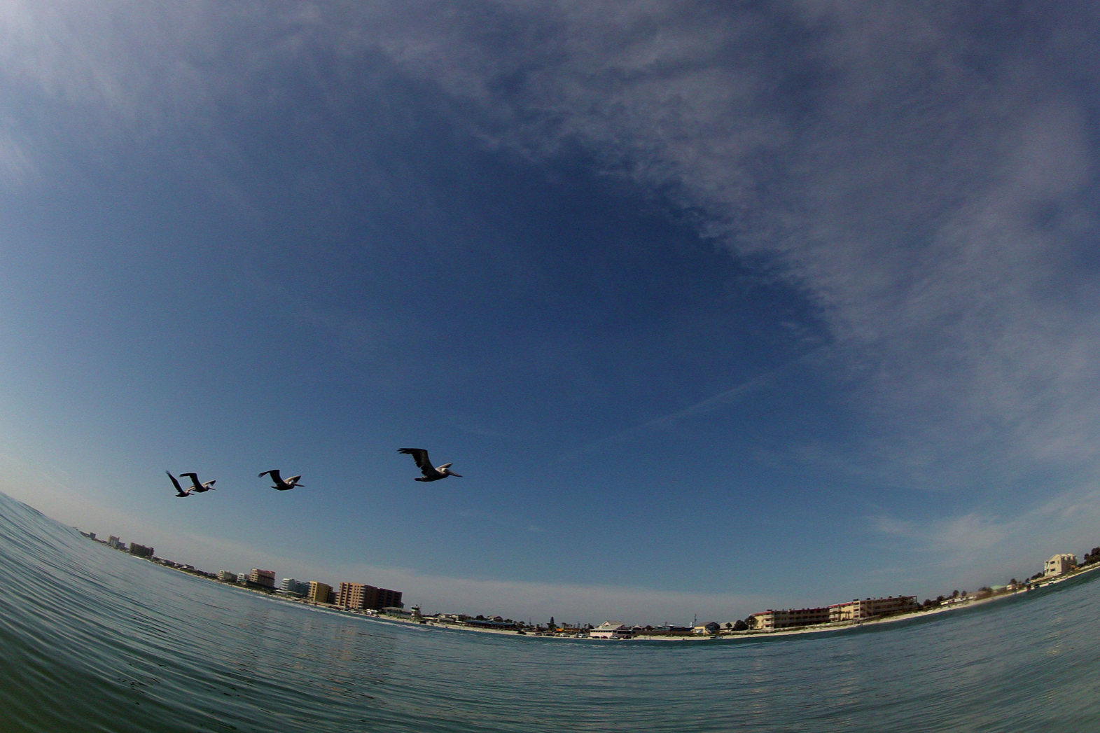 GoPro Fly Over