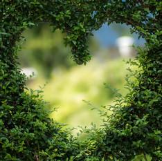מה באמת קרה לנו בגן עדן   חטא מתקנים באהבה   ענבל דרעי