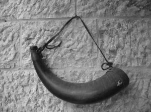shofar---israel-1-118796-m