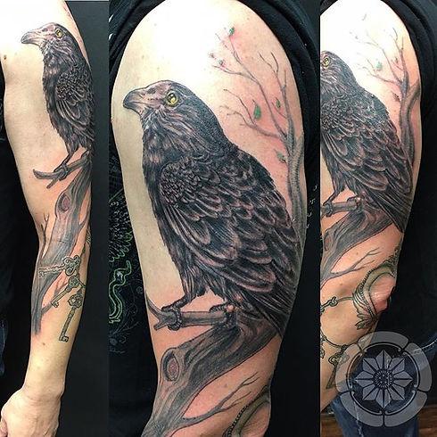 Richard's golden eyed Raven.jpg