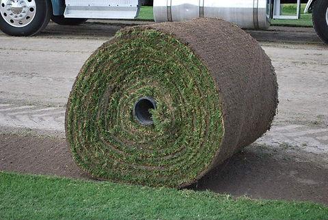 Big Roll.jpg