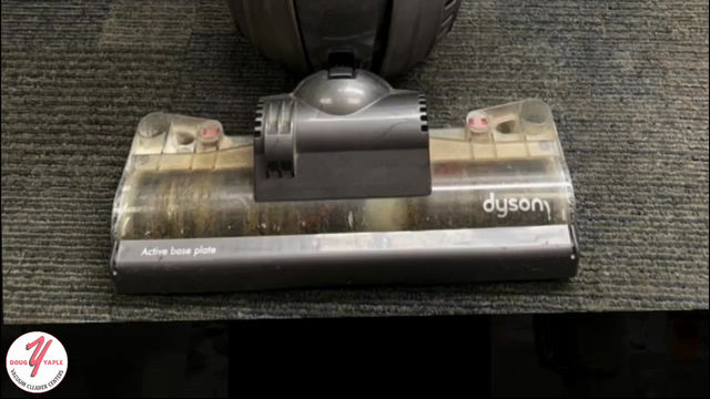 Dyson DC40 full service cleaning