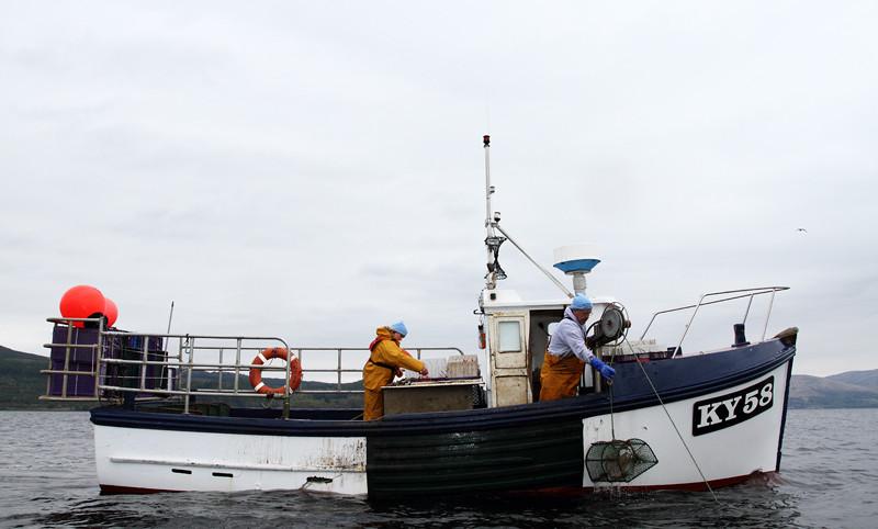 Creel fishing