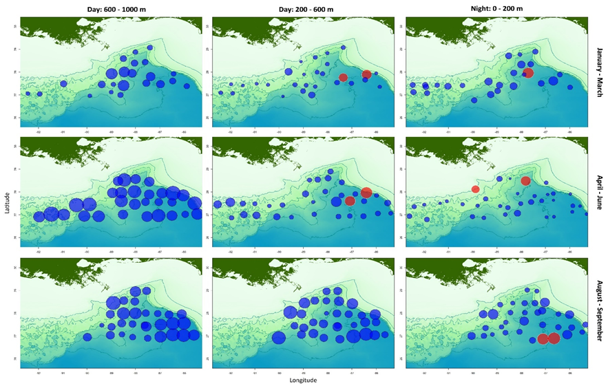 Assemblage similarity across the northern Gulf of Mexico