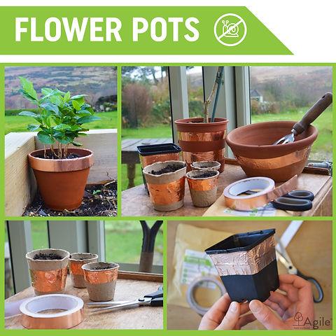 Flower Pots jpeg.jpg