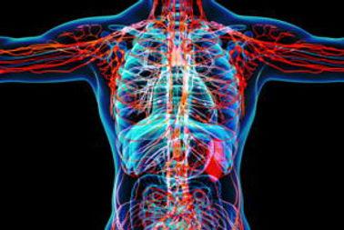 Medical-Checkup_Priority-Health-Medical-