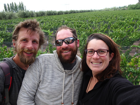 Mendoza, ses vignobles et les cols de montagne