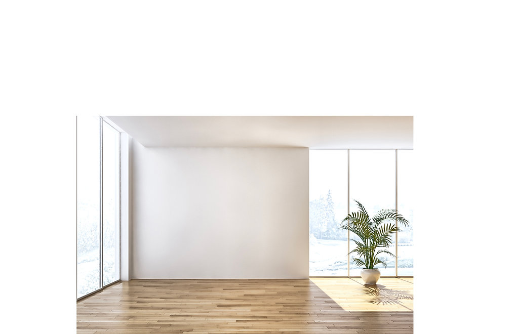 Galerie Vogel Raumfotos 3 leer.jpeg