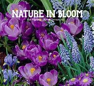 Nature_In-Bloom_edited.jpg