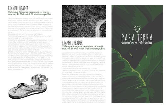 Brochure_design.jpg