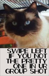 Swipe Left