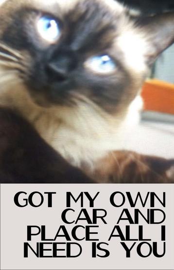 Got My Own Car