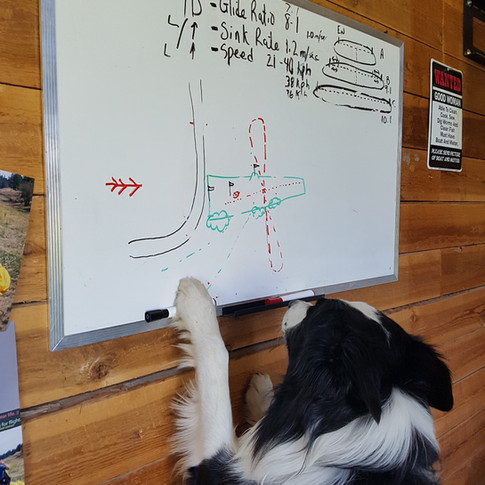 Cooper teaching the figure of eight approach