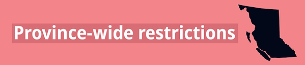 restrictions_thin_banner.png