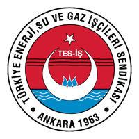 Türkiye Enerji, Su ve Gaz İşçileri Sendikası