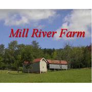 Mill River Farm