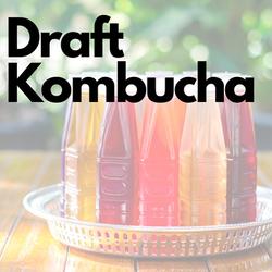 Draft Kombucha
