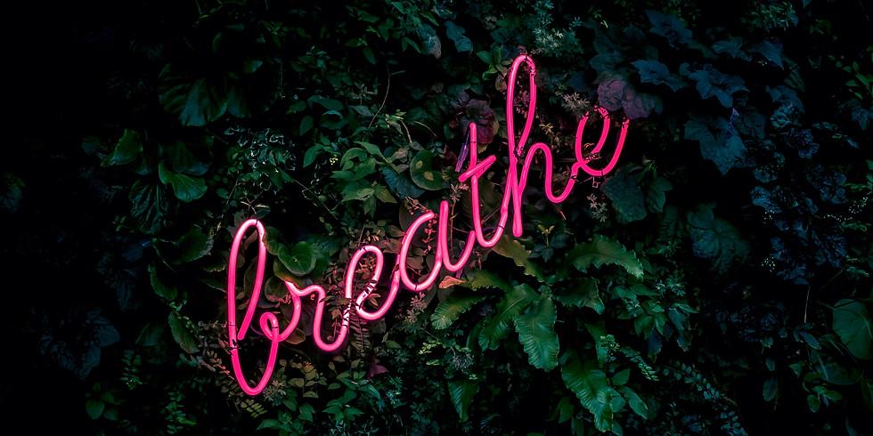 Breath Workshop (Free)