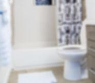 Toilet Assistance.jpg